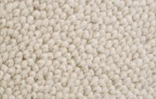Triumph – 100% wool carpet