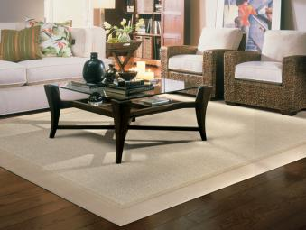 Area Rugs Two Border