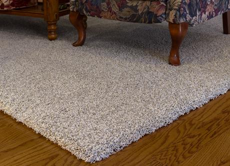 Stainmaster Solution Dyed Nylon Best Carpet For Pets